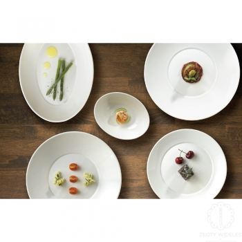 FLAIR Finest Vitrified tableware